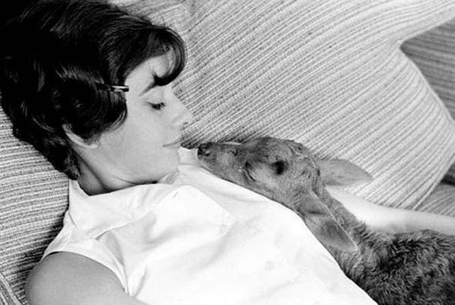 Σπάνιες φωτογραφίες της Audrey Hepburn (11)