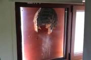 Τεράστια σφηκοφωλιά σε γυάλινο παράθυρο