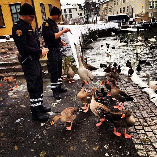 Η ζωή των αστυνομικών στην Ισλανδία (8)