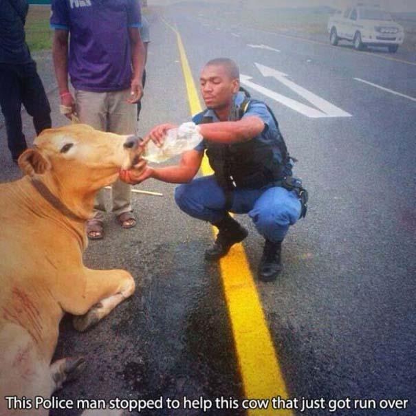 Αστυνομικοί που δίνουν το καλό παράδειγμα (22)