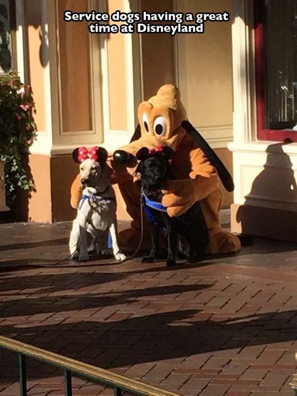 Μοναδικές στιγμές στα θεματικά πάρκα της Disney (2)