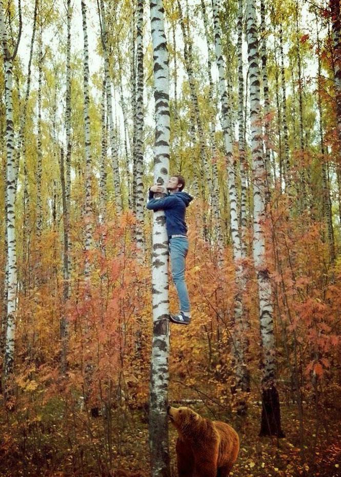 Η μέρα που αγάπησε τα δένδρα...   Φωτογραφία της ημέρας