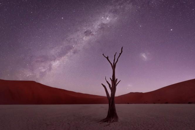 Ο έναστρος ουρανός πάνω από την έρημο Ναμίμπ | Φωτογραφία της ημέρας