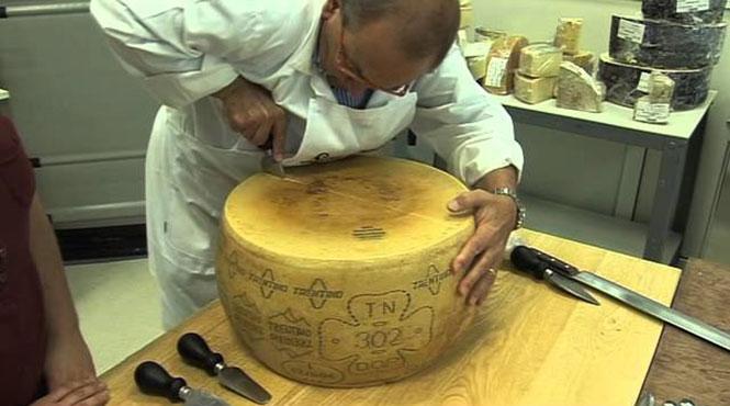 Δείτε πως ανοίγεται στη μέση ένα τεράστιο κεφάλι Ιταλικού τυριού