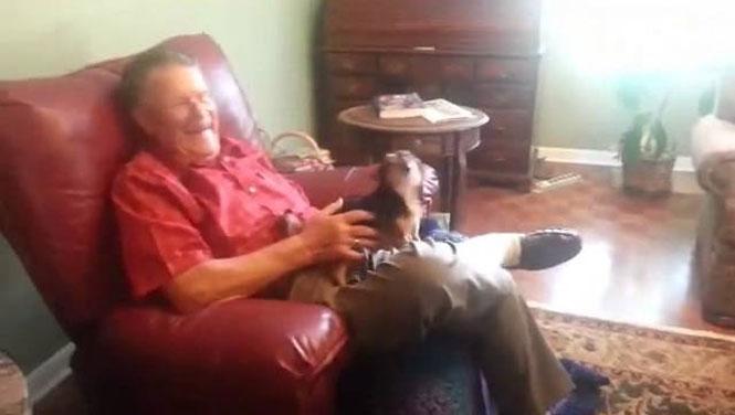 Σκύλος κάνει τον ψόφιο μόλις τον πιάνει στα χέρια του ένας άνθρωπος