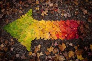 Όλο το χρωματικό φάσμα του Φθινοπώρου σε εντυπωσιακές φωτογραφίες (1)