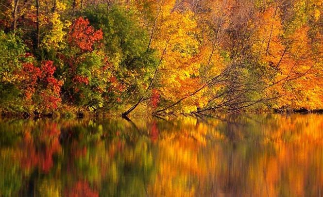 Όλο το χρωματικό φάσμα του Φθινοπώρου σε εντυπωσιακές φωτογραφίες (8)