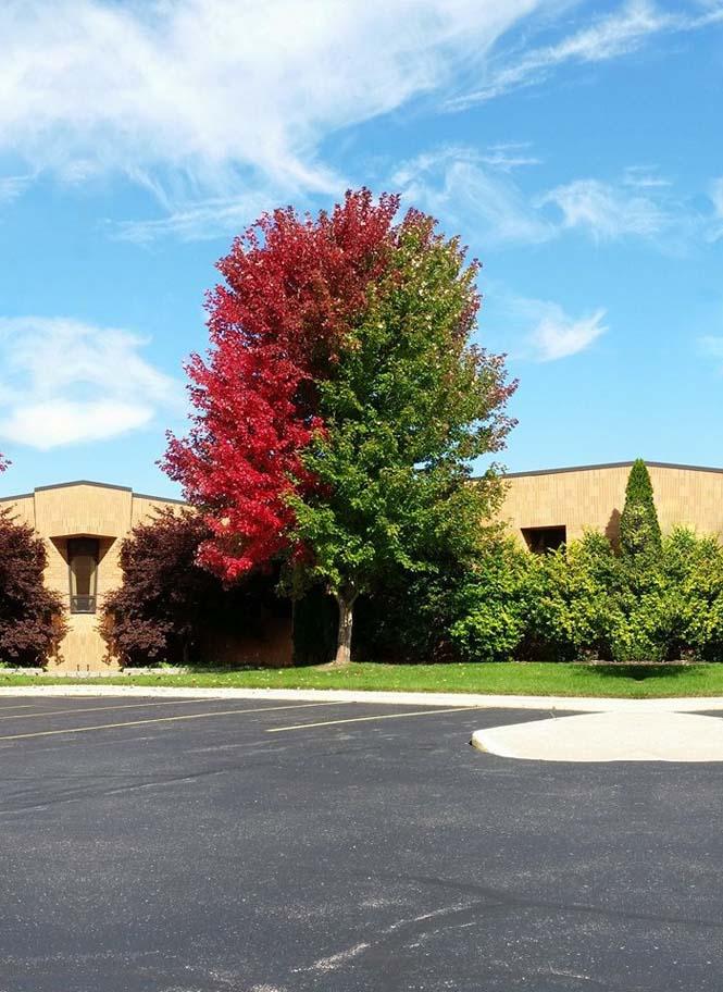 Όλο το χρωματικό φάσμα του Φθινοπώρου σε εντυπωσιακές φωτογραφίες (12)
