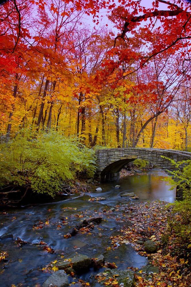 Όλο το χρωματικό φάσμα του Φθινοπώρου σε εντυπωσιακές φωτογραφίες (20)