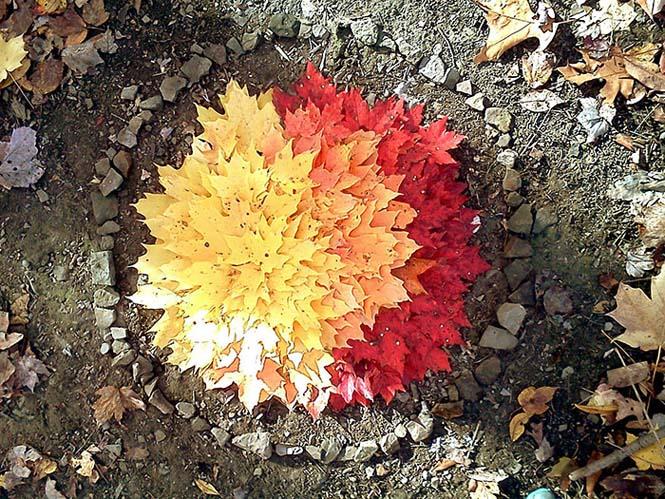 Όλο το χρωματικό φάσμα του Φθινοπώρου σε εντυπωσιακές φωτογραφίες (22)