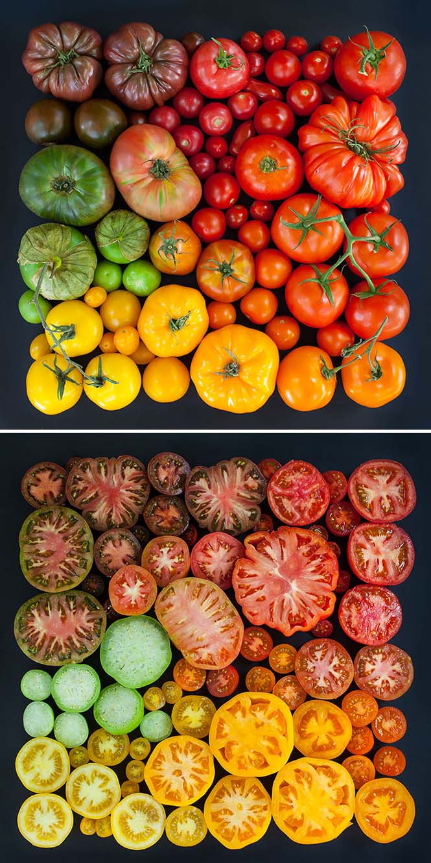 Όλο το χρωματικό φάσμα του Φθινοπώρου σε εντυπωσιακές φωτογραφίες (23)