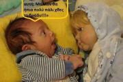 Αστείες Φωτογραφίες (1)