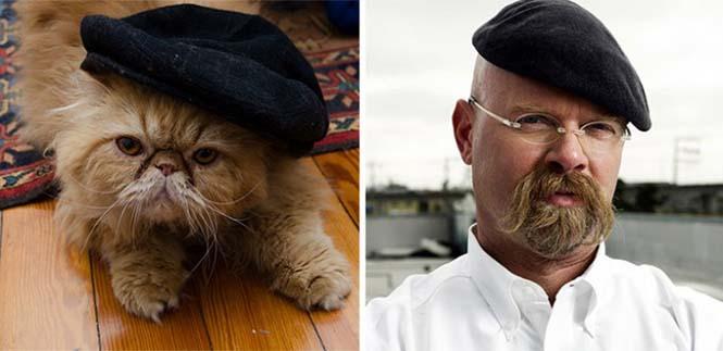 Γάτες που μοιάζουν με κάτι άλλο (8)