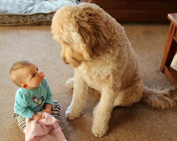 Μωρά με σκύλους: Ένας ακαταμάχητος συνδυασμός (3)