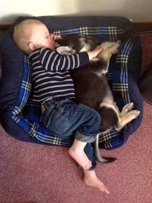 Μωρά με σκύλους: Ένας ακαταμάχητος συνδυασμός (4)