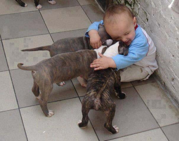 Μωρά με σκύλους: Ένας ακαταμάχητος συνδυασμός (9)