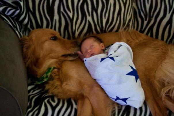 Μωρά με σκύλους: Ένας ακαταμάχητος συνδυασμός (11)