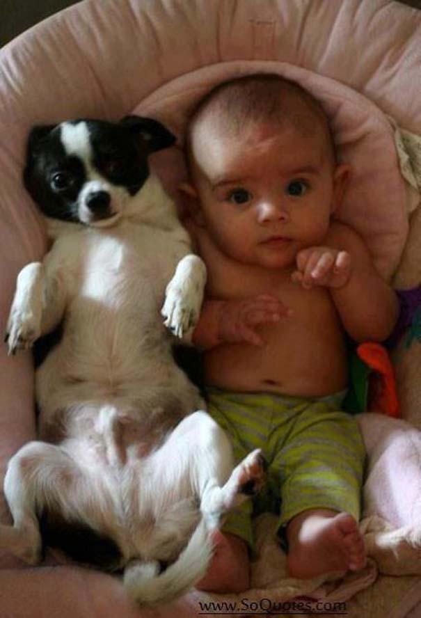 Μωρά με σκύλους: Ένας ακαταμάχητος συνδυασμός (14)