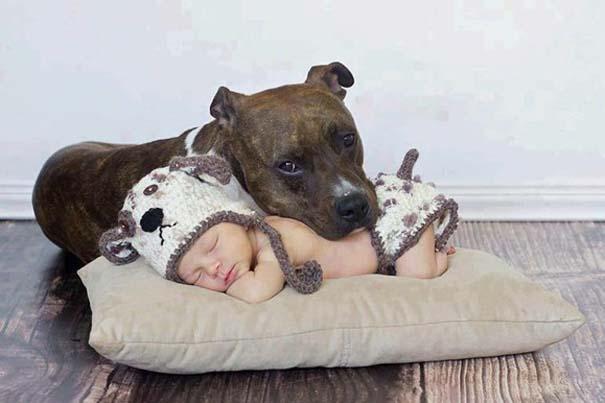 Μωρά με σκύλους: Ένας ακαταμάχητος συνδυασμός (16)