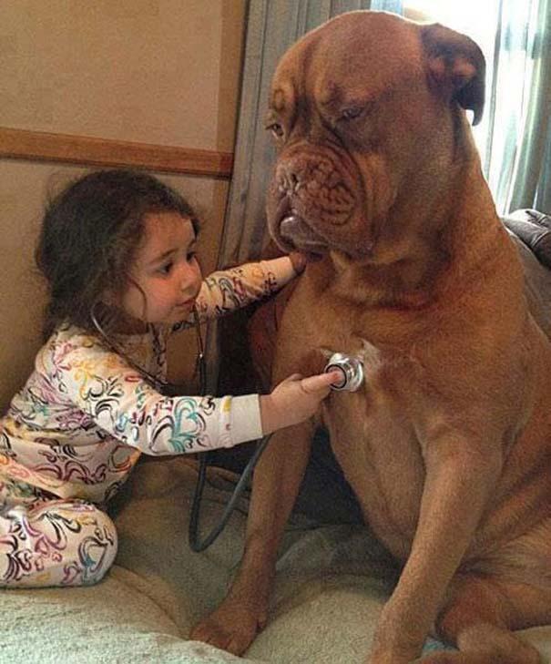 Μωρά με σκύλους: Ένας ακαταμάχητος συνδυασμός (17)