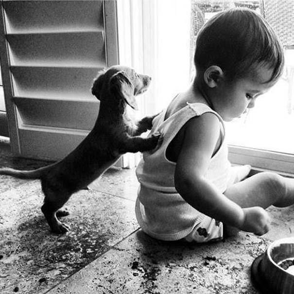 Μωρά με σκύλους: Ένας ακαταμάχητος συνδυασμός (19)