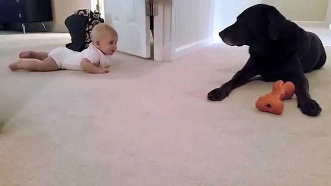 Το πρώτο μπουσούλημα ενός μωρού και η αναπάντεχη επιβράβευση