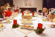 13 σκύλοι και μια γάτα στο χριστουγεννιάτικο τραπέζι