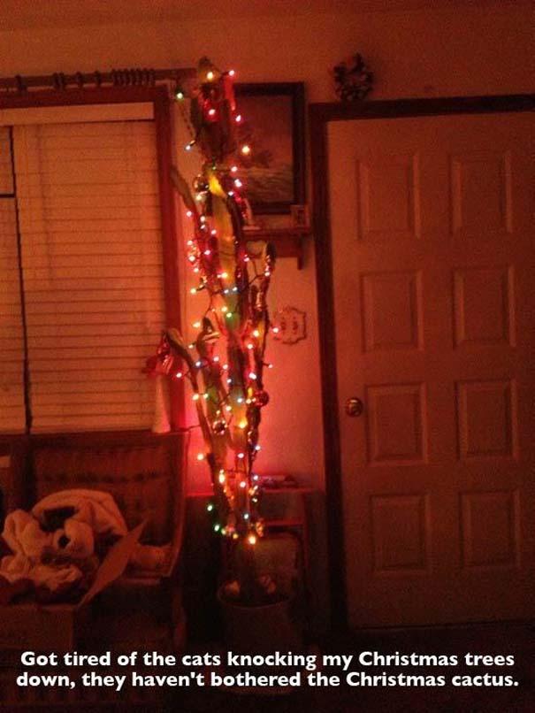 Ασυνήθιστοι χριστουγεννιάτικοι στολισμοί (12)