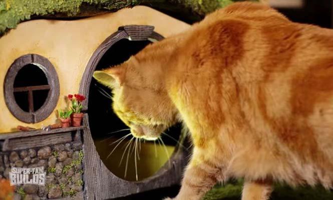 Δείτε τι έφτιαξε ένας λάτρης του Lord of The Rings για την γάτα του (11)