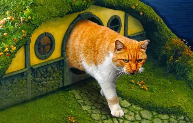Δείτε τι έφτιαξε ένας λάτρης του Lord of The Rings για την γάτα του (16)