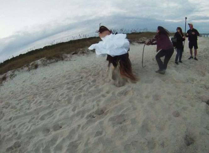 Η φωτογράφηση γάμου με άλογο δεν είναι πάντα καλή ιδέα (7)