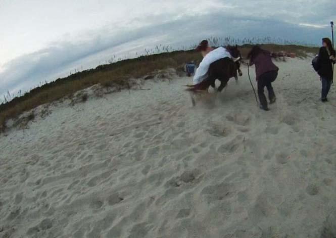 Η φωτογράφηση γάμου με άλογο δεν είναι πάντα καλή ιδέα (8)