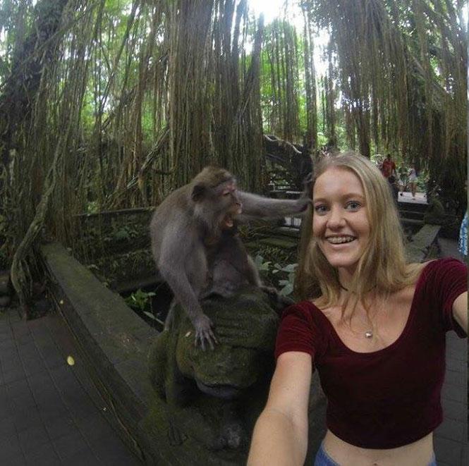 Ήθελε να βγάλει selfie με μια μαϊμού, όμως τα πράγματα δεν πήγαν όπως τα σχεδιάζε... (1)