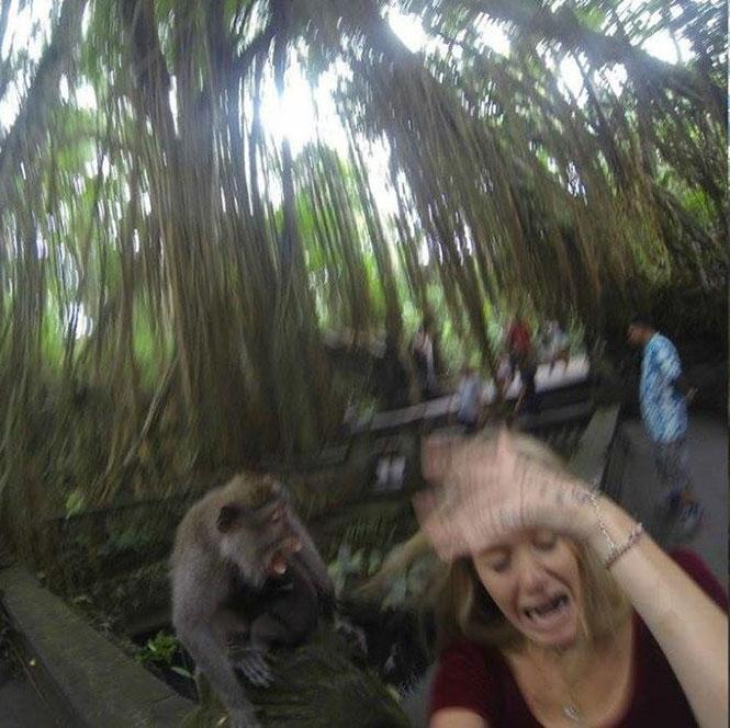 Ήθελε να βγάλει selfie με μια μαϊμού, όμως τα πράγματα δεν πήγαν όπως τα σχεδιάζε... (2)