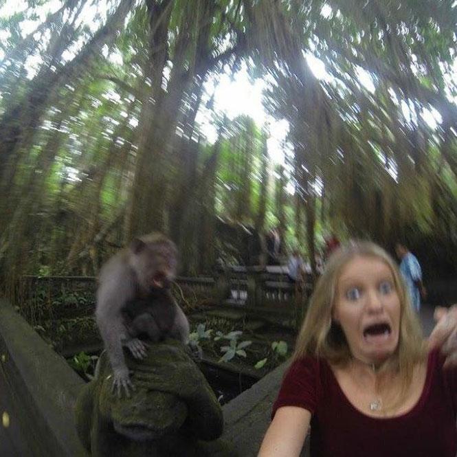 Ήθελε να βγάλει selfie με μια μαϊμού, όμως τα πράγματα δεν πήγαν όπως τα σχεδιάζε... (3)