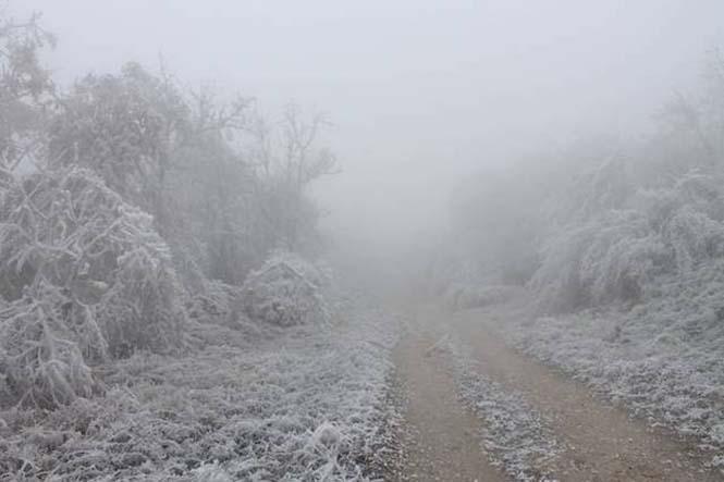 Παγωμένη ομίχλη μετέτρεψε τα πάντα σε σουρεαλιστικό τοπίο από πάγο (1)