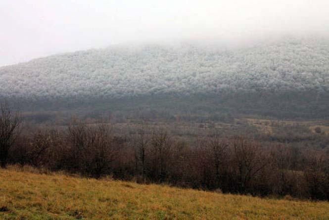 Παγωμένη ομίχλη μετέτρεψε τα πάντα σε σουρεαλιστικό τοπίο από πάγο (2)