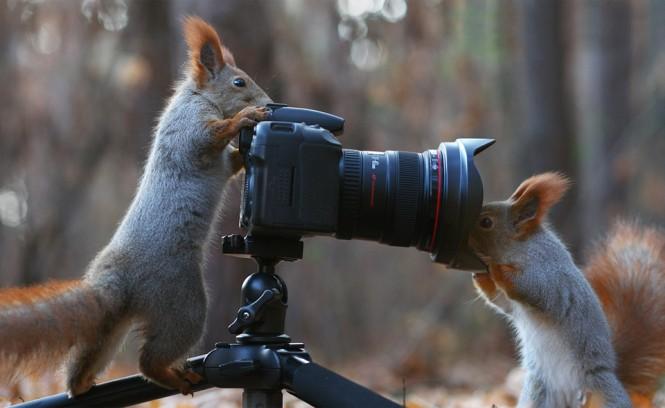Ο φωτογράφος και το μοντέλο   Φωτογραφία της ημέρας