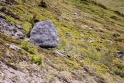 Αυτός ο τεράστιος βράχος στις Ελβετικές Άλπεις είναι στην πραγματικότητα κάτι εντελώς διαφορετικό (2)