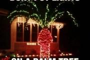 18 ξεκαρδιστικά Χριστουγεννιάτικα Fails (1)