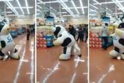 Αγελάδα μασκότ χορεύει σε super market