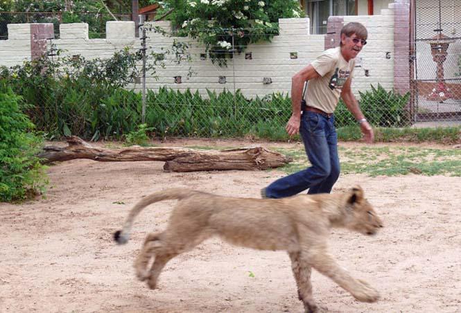 Άνδρας και λιοντάρι έχουν μια σπάνια φιλία (2)