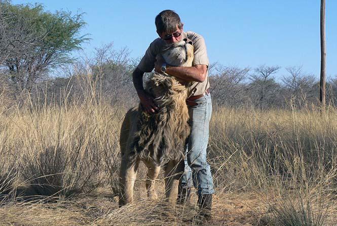Άνδρας και λιοντάρι έχουν μια σπάνια φιλία (3)