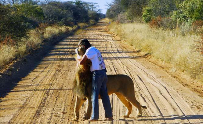 Άνδρας και λιοντάρι έχουν μια σπάνια φιλία (4)