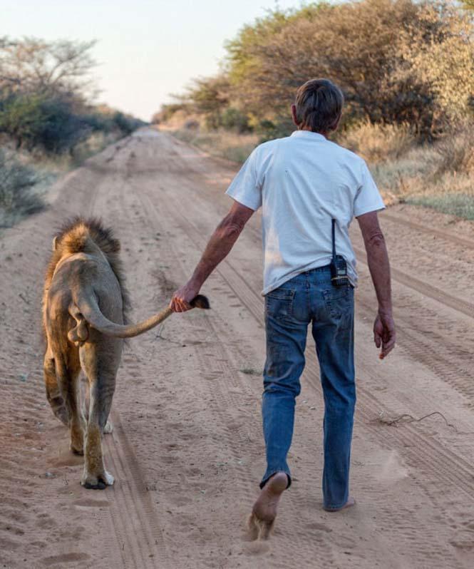 Άνδρας και λιοντάρι έχουν μια σπάνια φιλία (6)