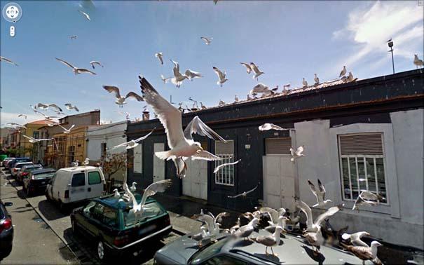 Google Street View (13)