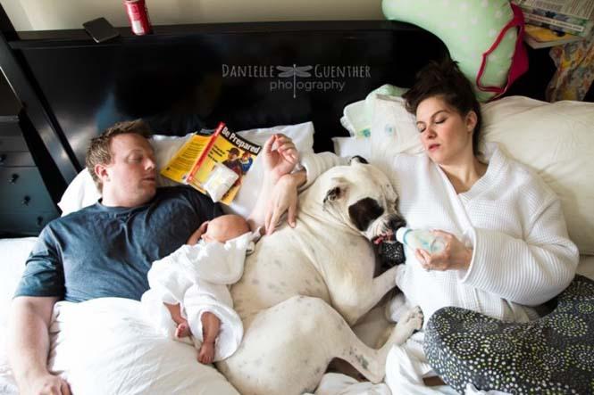Τα ξεκαρδιστικά οικογενειακά πορτραίτα ενός φωτογράφου (5)