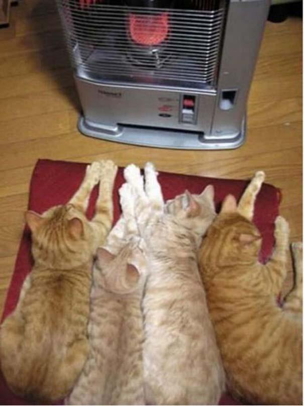 Ξέρεις ότι κάνει πολύ κρύο, όταν... (7)