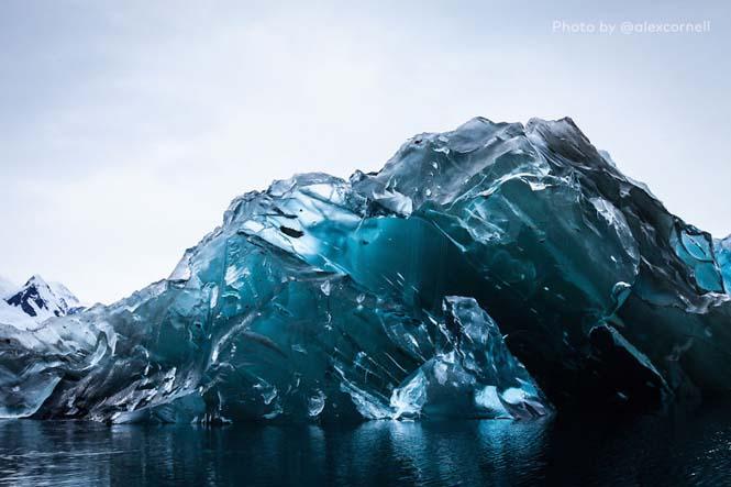 Σπάνιες φωτογραφίες ενός αναποδογυρισμένου παγόβουνου (3)