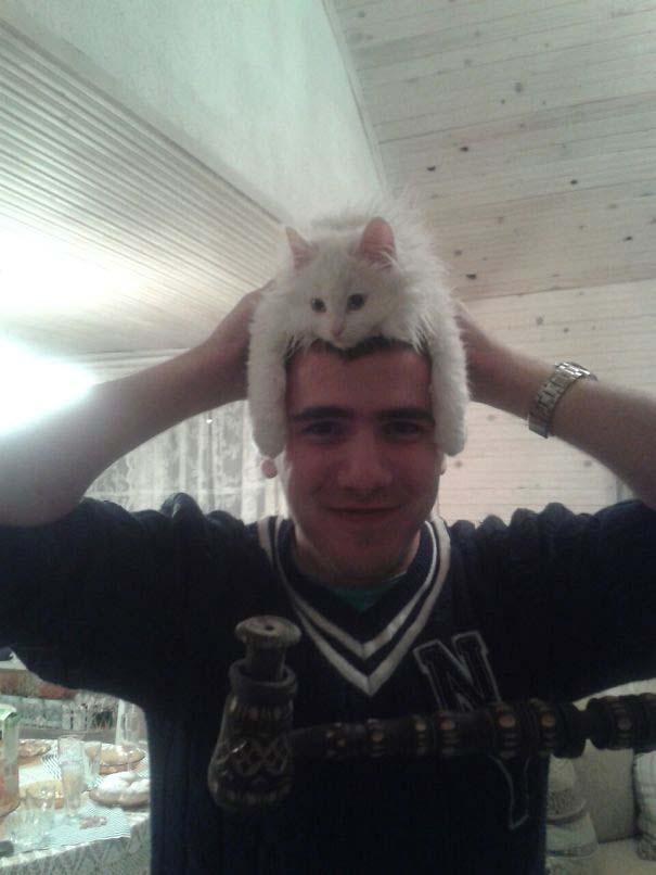 Άνθρωποι που φορούν γάτες για καπέλο (1)